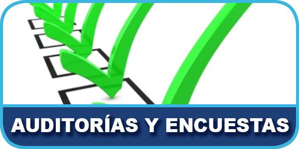 AUDITORÍAS Y ENCUESTAS